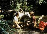 Das Dinosaurierbaby – Geheimnis einer verlorenen Legende – Bild: RTL