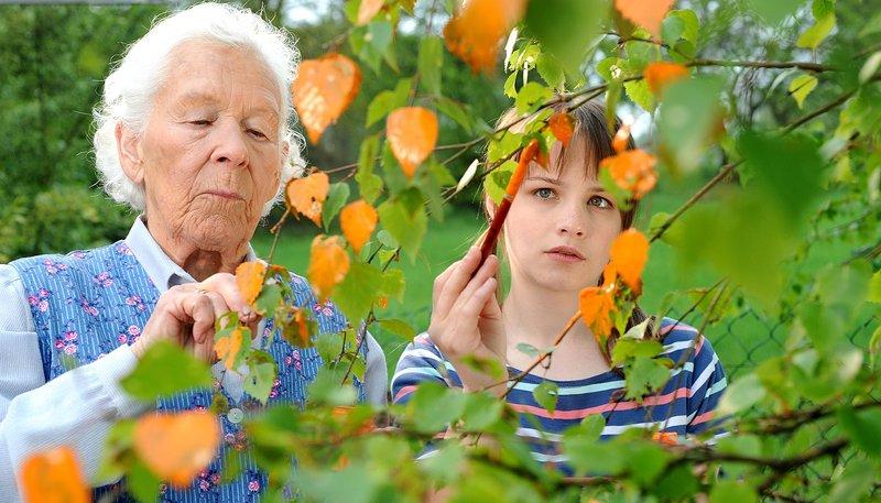 Oma Strumpf (Renate Delfs) und Eva (Jasna Fritzi Bauer) geben den Birkenblättern einen neuen Anstrich. – Bild: MDR/NDR/Diana Küster