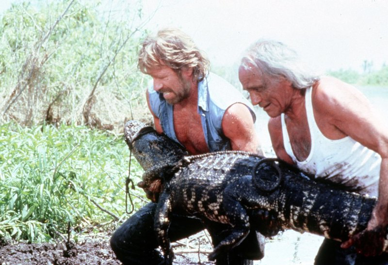 Im Bild: Matt Hunter (Chuck Norris, l.) und John (Dehl Berti, r.). – Bild: Paramount