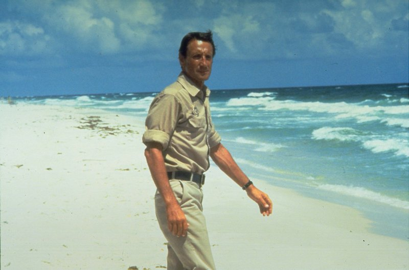Polizeichef Brody (Roy Scheider) ist sich sicher: Der weiße Hai ist irgendwo da draußen. – Bild: OTCM