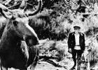 Abenteuer in der Taiga – mdr