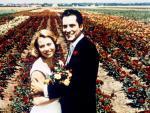 Mit Rosen fängt die Liebe an – Bild: ORF