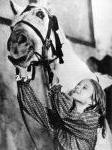Das Pferdemädchen – Bild: mdr