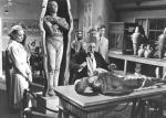 Der Fluch der Mumie – Bild: kabel eins Classics
