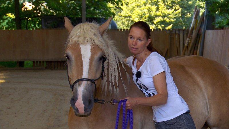 Pferdeprofi Sandra Schneider Unfall