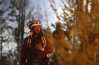 Wildfires – Lauffeuer