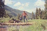 Die Abenteuer der Familie Robinson in der Wildnis – Bild: 3sat