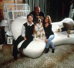 Lucky, der reichste Hund der Welt