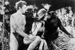 Tarzan, der Affenmensch – Bild: WDR