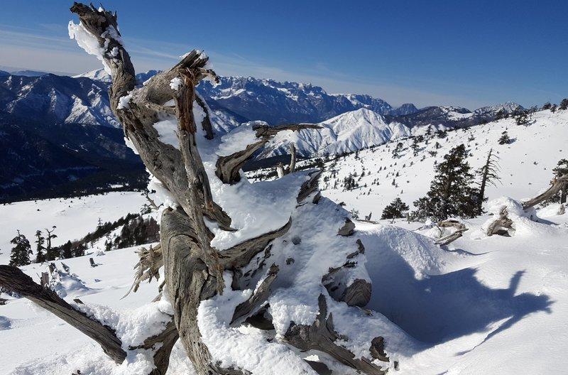 Schneelandschaft im Pindosgebirge unweit des Bergdorfes Vasilitsa – Bild: arte