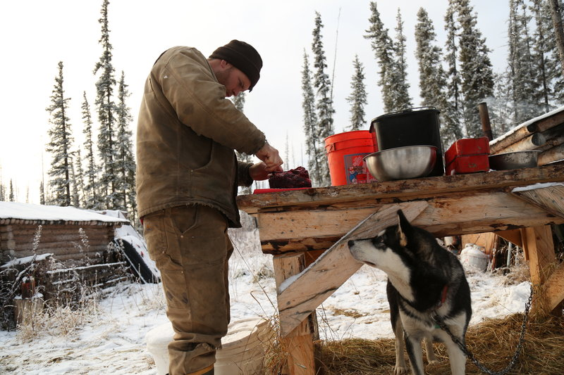 Tyler cutting meat outside while a dog watches from under a table. – Bild: Animal Planet / Discovery Communications