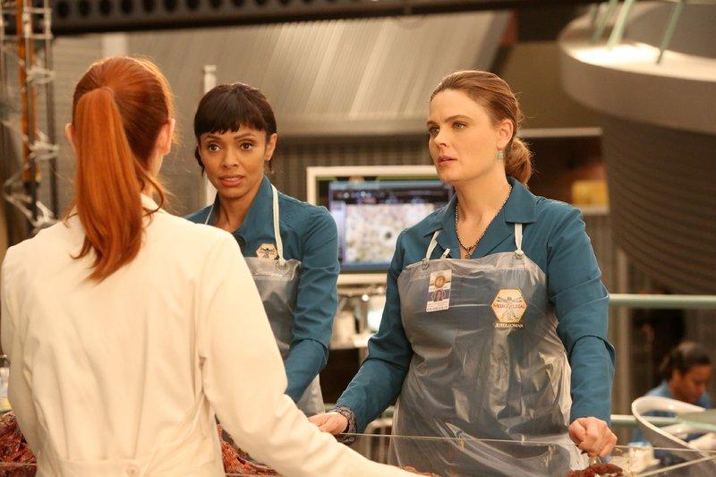 Jessica (Laura Spencer, Rückansicht), Cam (Tamara Taylor) und Brennan (Emily Deschanel, r.) untersuchen die sterblichen Überreste einer Leiche, die von einer Schlammlawine angespült wurde. – Bild: RTL / FOX