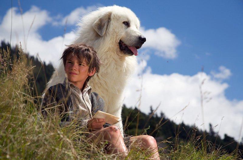 Während seines Abenteuers kommt der Waisenjunge Sebastian (Félix Bossuet) einem großen Geheimnis auf die Spur. – Bild: WDR/Neue Visionen Filmverleih