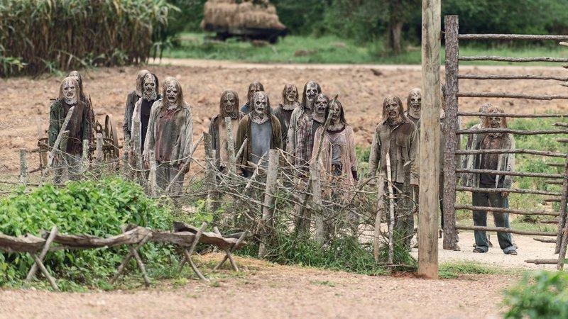 Maxdome The Walking Dead