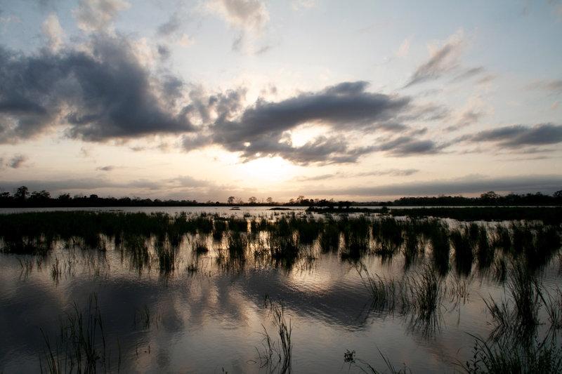 Das Klima des im nordindischen Bundesstaat Assam gelegenen Kaziranga-Nationalparks wird vom Monsun bestimmt: Hier wechseln sich lebensfeindliche Dürreperioden mit riesigen Überschwemmungen ab. – Bild: ARTE France / © One Planet/Jean-Baptiste Erreca