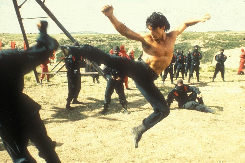 Sean Daivdson (David Bradley) lässt sich von den Ninjas nicht unterkriegen.. – Bild: TMG