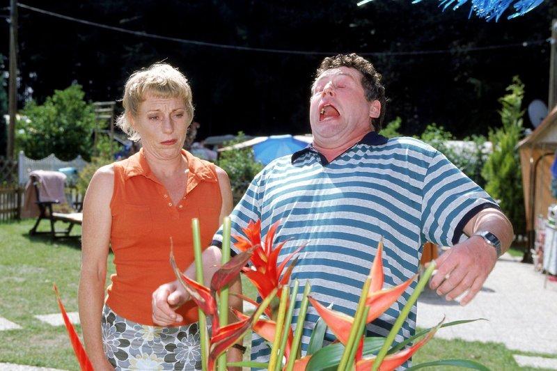 Benno (Willi Thomczyk) hat eine Allergie. Nur wogegen? Ein Test hat ergeben, dass es nicht die neuen Vorhänge sind, die Uschi (Antje Lewald) aufgehangen hat. Also müssen es wohl die exotischen Blumen sein, die Stefanie in Pflege genommen hat. – Bild: TVNOW / Frank Dicks