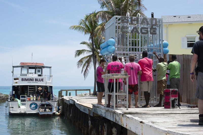 Crew in pink and green t-shirts pushing SHAQ cage on dock. – Bild: Discovery Communications