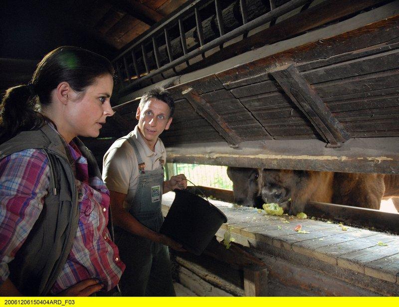 Susanne Mertens (Elisabeth Lanz) und Pfleger Conny (Thorsten Wolf) bei der Fütterung im Stall des Wisentgeheges. – Bild: ARD/BR/Christa Köfer