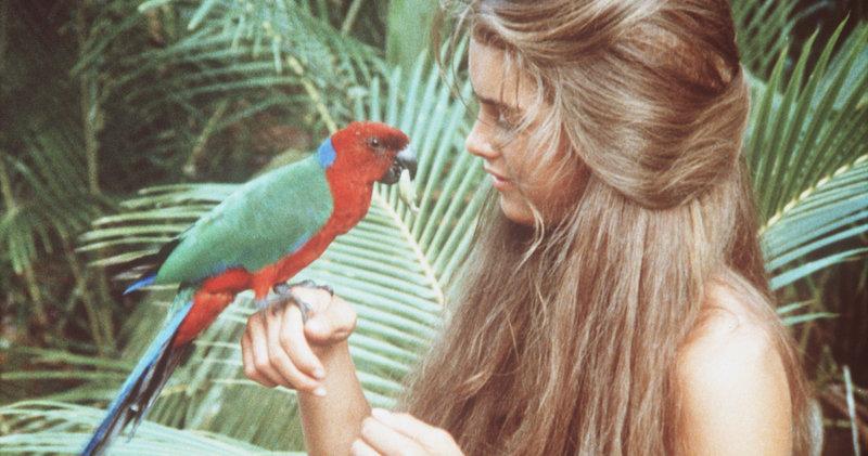 Auf dem einsamen Eiland lebt Emmeline (Brooke Shields) wie im Paradies. – Bild: Columbia Pictures Lizenzbild frei
