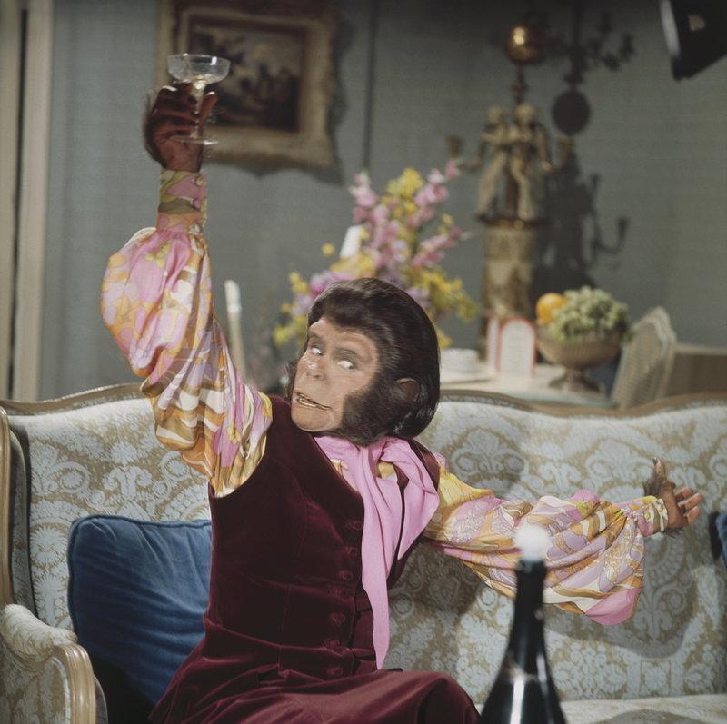Dr. Cornelius (Roddy McDowall) muss schon bald erkennen, dass das Leben auf der Erde auch so seine Tücken hat ... – Bild: 20th Century Fox Lizenzbild frei