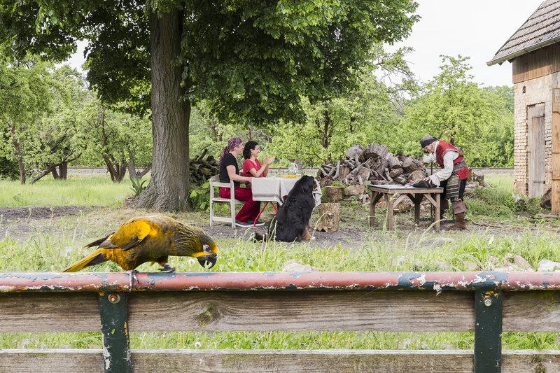Papagei – Der Schatz des Piraten (Staffel 37, Folge 4) – Bild: ZDF/Ole Schwarz