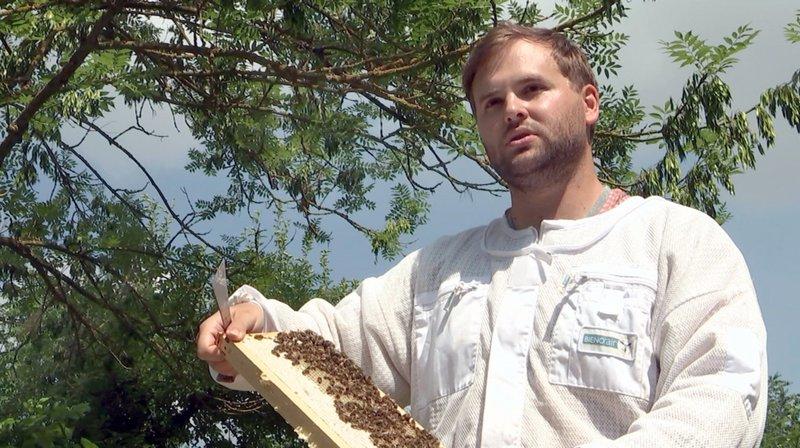 Der Berufsimker Oliver Hohmann aus Gudensberg-Gleichen produziert Honige mit verschiedenen Geschmacksrichtungen. – Bild: HR