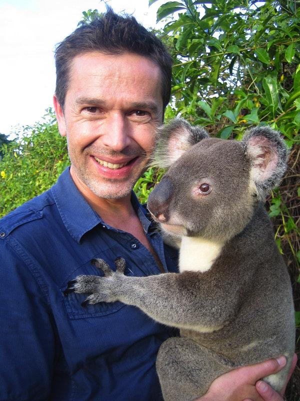 Dirk Steffens mit einem kranken Koalabären im Wildlife Hospital. Obwohl sie eine Ikone des Landes sind, haben sie in Australien keine Lobby. – Bild: ZDF / © Patrick Benze