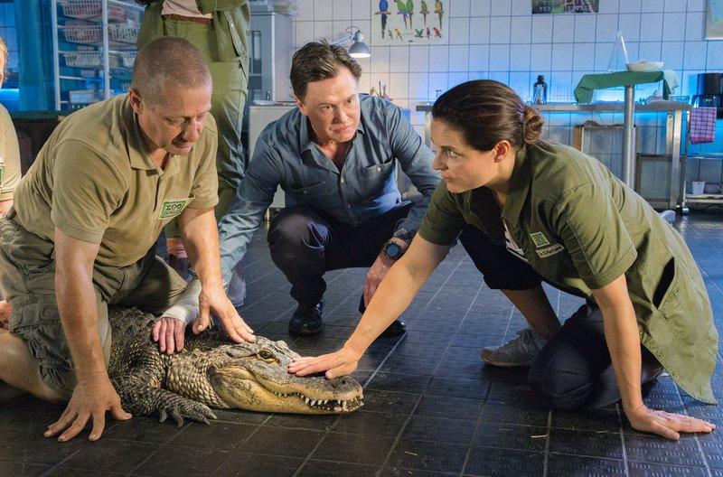 Wolfgang Neubert (Uwe Bohm, M.), Besitzer einer Reptilienshow, will sein Krokodil Nero an den Zoo verkaufen. Er verheimlicht Tierärztin Susanne Mertens (Elisabeth Lanz, r.) allerdings, dass das Tier nicht gesund ist. (Komparse, l.) – Bild: ARD/Steffen Junghans