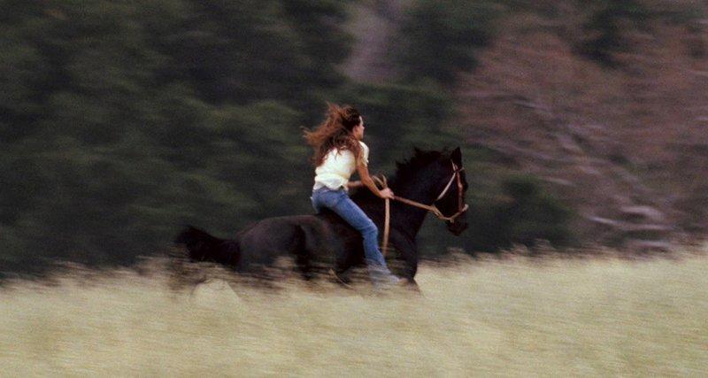 Pferdenärrin Katy (Alison Lohman) genießt die Freiheit am liebsten auf dem Rücken der Pferde. – Bild: Super RTL