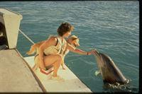 Zeus und Roxanne – Eine tierische Freundschaft – Bild: kabel eins