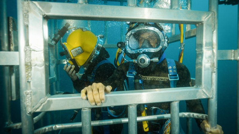 Marc Payne and Andre Rerekura in a shark cage. – Bild: Discovery Channel