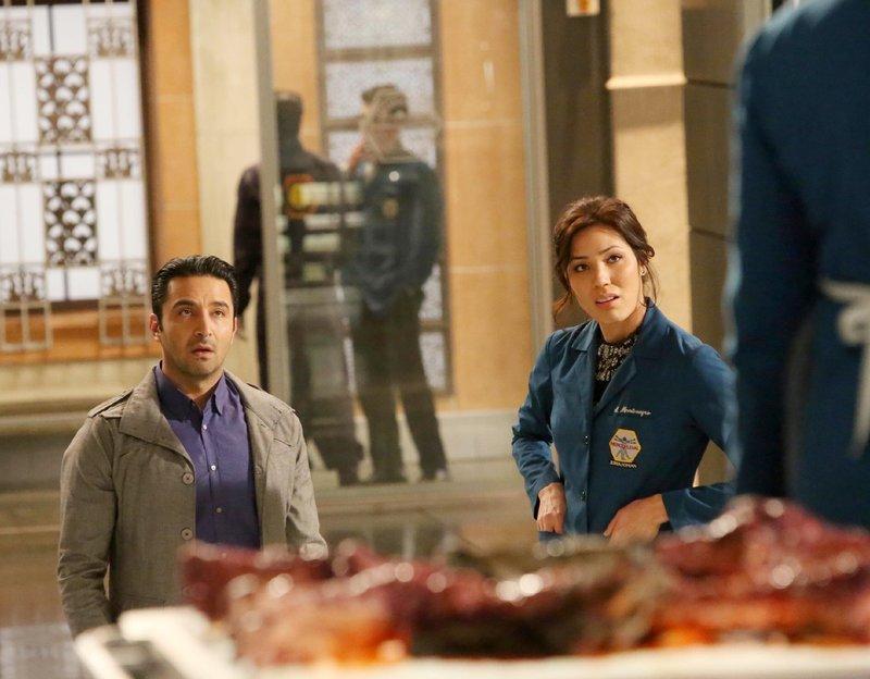 Arastoo Vaziri (Pej Vahdat), Angela Montenegro (Michaela Conlin) Die Verwendung des sendungsbezogenen Materials ist nur mit dem Hinweis und Verlinkung auf TVNOW gestattet. – Bild: TVNOW / FOX