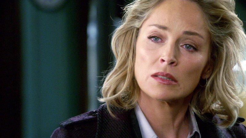Die attraktive Staatsanwältin Jo Marlowe (Sharon Stone) steht dem Team der Special Victims Unit zur Seite. Gemeinsam lösen sie einen ungewöhnlichen Brandfall. – Bild: VOX
