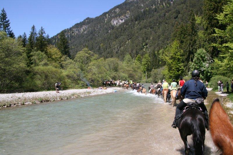Er ist eine besondere Herausforderung: für Pferd und Reiter. Er ist die Königsdisziplin der Wanderreiter: der Alpenritt. In neun Tagen sind 320 Kilometer zu bewältigen - über steile Anstiege und durch reißende Flüsse. Manche Tagesetappe geht über 50 Kilometer. Seit 2000 findet jedes Jahr zu Pfingsten, der Alpenritt statt. Vom Kloster Andechs aus, geht es über Schongau, Oberammergau, den Fernpass, Imst, Reschenpass und durch den Vinschgau hindurch, bis nach Meran. Im Bild: Ritt durch die Loisach. – Bild: BR/Susanne Roser
