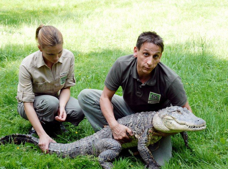 Tierpfleger Conny (Thorsten Wolf, rechts) und Tierpflegerin Anett (Anna Bertheau) machen sich Sorgen um Krokodil Konrad. – Bild: BR/ARD/Christa Köfer