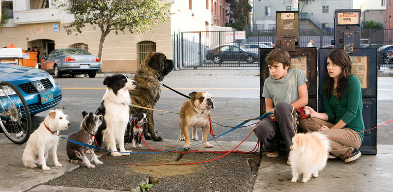 Das Hundehotel – Bild: ORF
