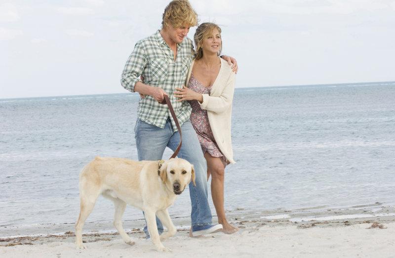 John Grogan (Owen Wilson) and wife Jenny (Jennifer Aniston) enjoy a walk on the beach with Marley. – Bild: TV24