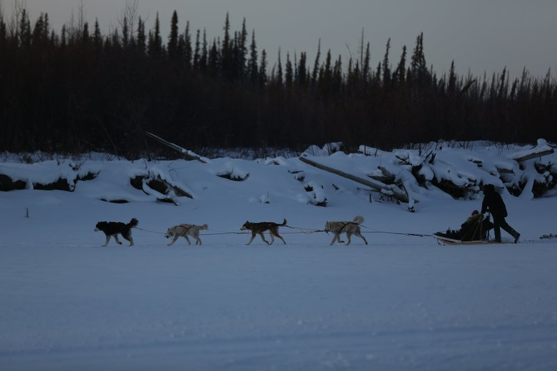 Tyler Selden runs dogsled team with Ashley and Sydney in sled. – Bild: Discovery Communications