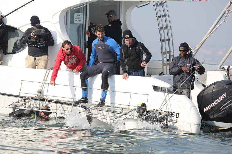 Michael Phelps and the crew watch a shark approach the cage, which Michael is about to enter. – Bild: Discovery Communications