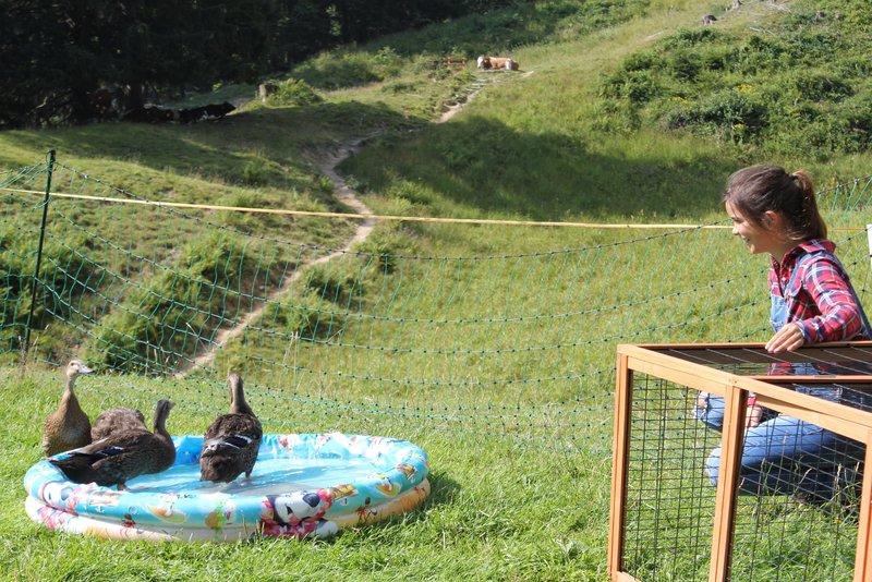 Die Enten sind drei Nummern gröüer geworden. Anna hat fĂĽr die Vögel ein neues Schwimmbecken organisiert. Das gibt eine lustige Poolparty.– Bild: BR/Bild Medienproduktion GmbH & Co. KG