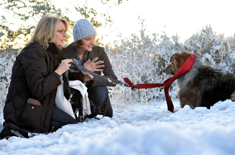 Als Freeway davon läuft, können Beth (Diane Keaton, links) und ihre Tochter Grace (Elisabeth Moss) ihn mit einem ungewöhnlichen Trick zurücklocken. – Bild: ARD Degeto/BR/Dolly Grip Productions, LLC.