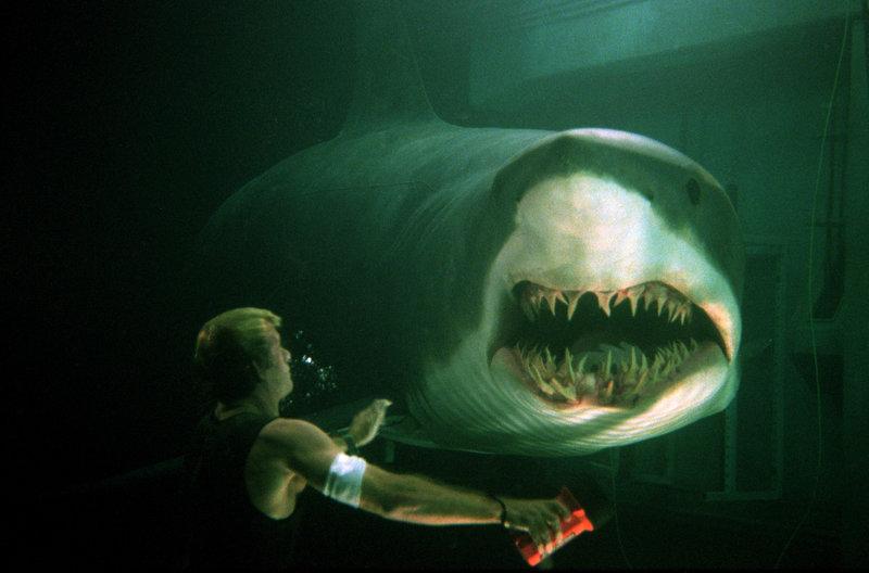 Carter Blake (Thomas Jane) wird von einem Hai attackiert. – Bild: ZDF und Merie Weismiller Wallace