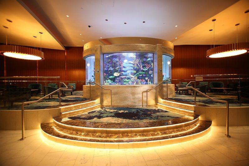 Aquarium Profis Dmax