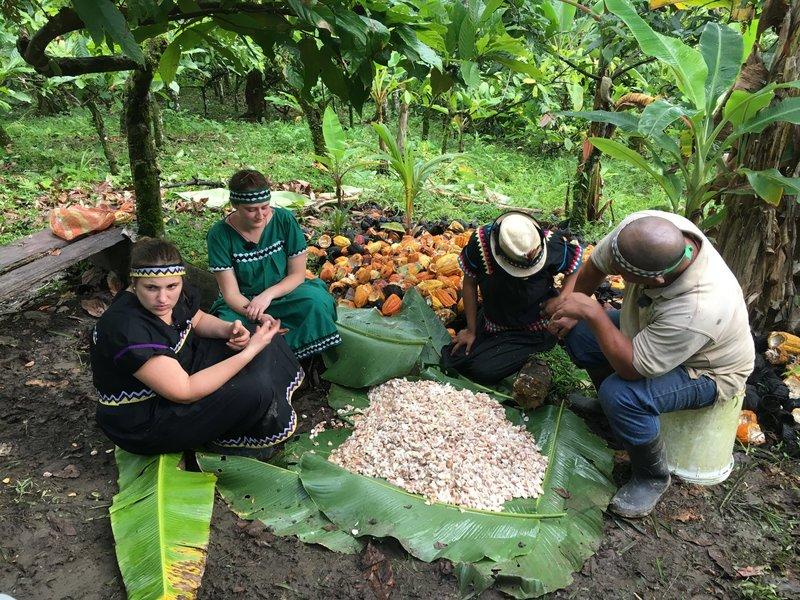 Tauscharbeiterinnen Martha und Antonia mit den geernteten Kakaobohnen. – Bild: BR/Constantin Entertainment GmbH
