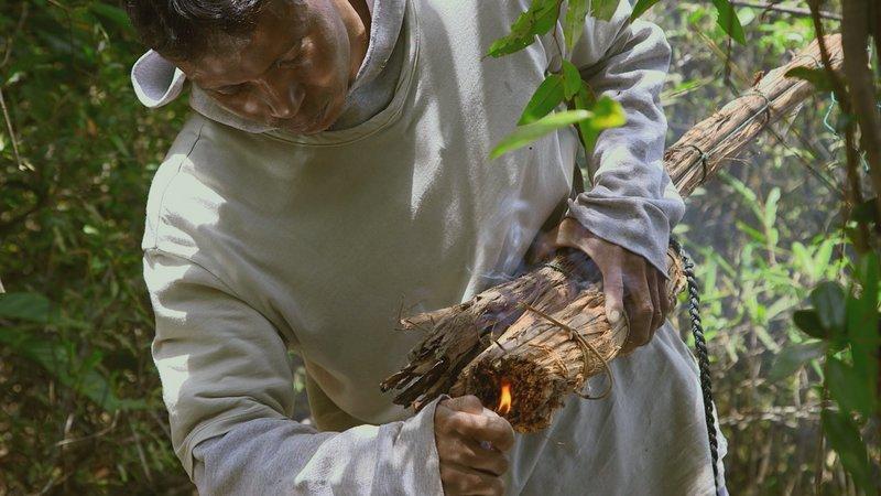 Die trockenen Äste werden angezündet, um die Bienen zu vertreiben. – Bild: Grand Angle Productions / Die trockenen Äste werden angezündet, um die Bienen zu vertreiben.