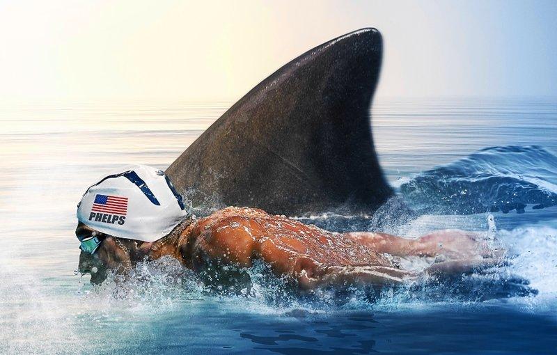 Sharksanity – Sensationelle Hai-Momente (Staffel 30, Folge 16) – Bild: Discovery Communications / April Vara-Pages