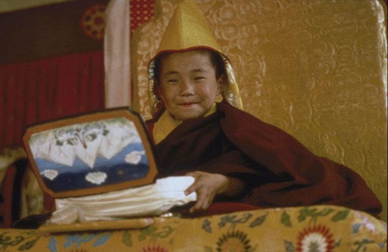 Mit der Zeit stellt sich heraus, dass auch der junge Dalai Lama (Jamyang Wangchuk) an den seltsamen Fremden interessiert ist und beginnt langsam über Mittler mit Harrer Kontakt knüpfen. Eines Tages setzt sich der junge Gottkönig über alle Konventionen hinweg und ruft Harrer persönlich zu sich. Es beginnt eine lange, freundschaftliche Beziehung zwischen dem österreichischen Flüchtling und dem jungen, wissbegierigen Herrscher ... – Bild: ProSieben Media AG