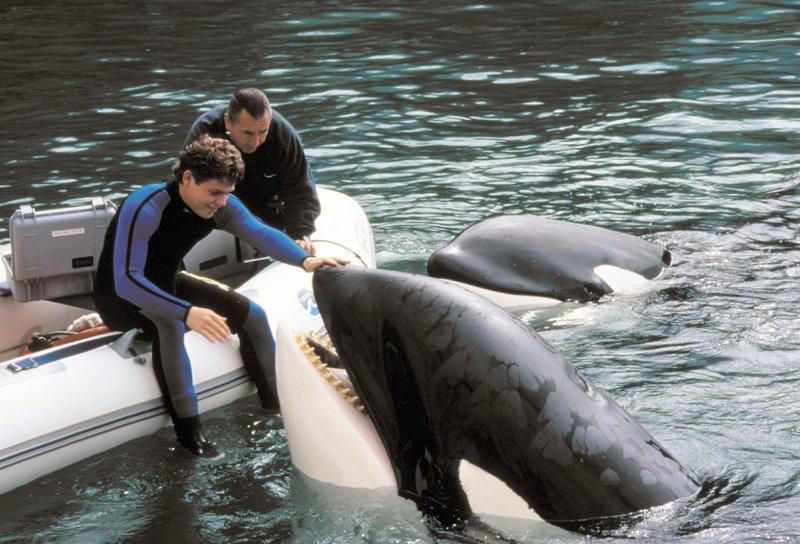 Jesse (Jason James Richter, l.) verbindet eine tiefe Freundschaft mit Orca Willy. – Bild: RTL