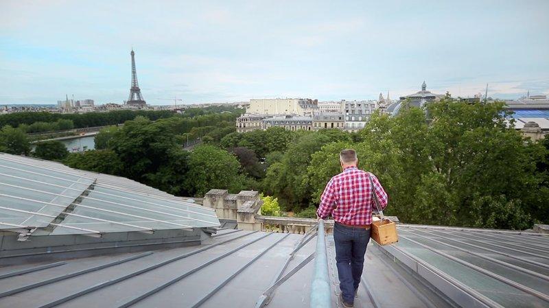 Auf dem berühmten Glasdach des Pariser Grand Palais hat ein Imker Bienenstöcke aufgestellt. – Bild: arte